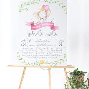 Printable Little Elephant Milestone Poster- Pink